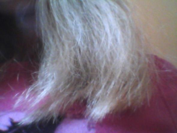 Haare kaputt und dunn