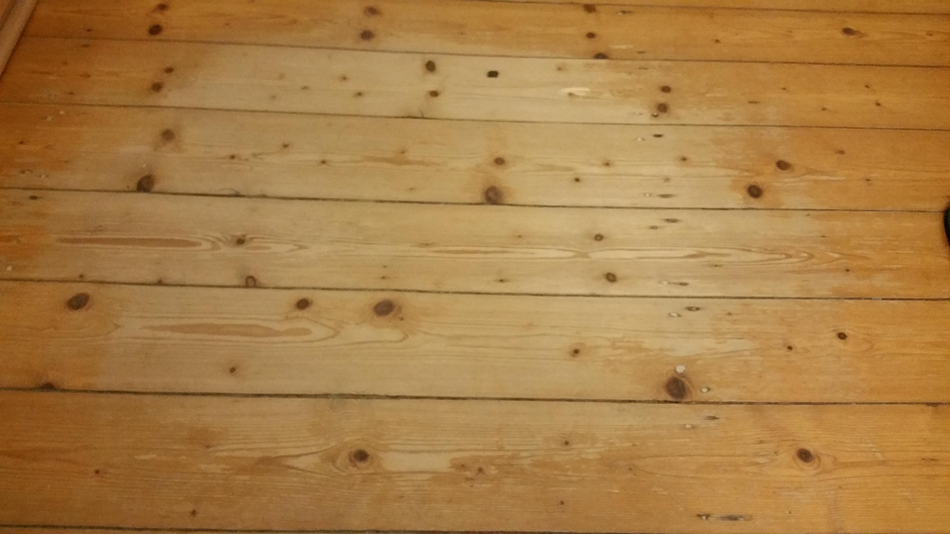 Fußbodenbelag In Mietwohnung ~ Mietwohnung fußboden beschädigt haftpflicht diese schäden