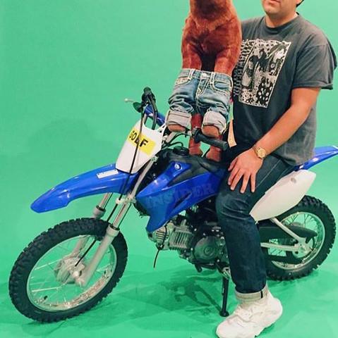 Ggggg - (Motorrad, Pocketbike, Dirtbike)