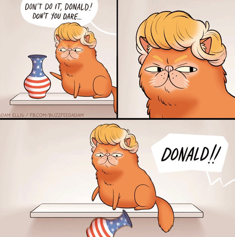 Donald Trump The Cat In The Hat