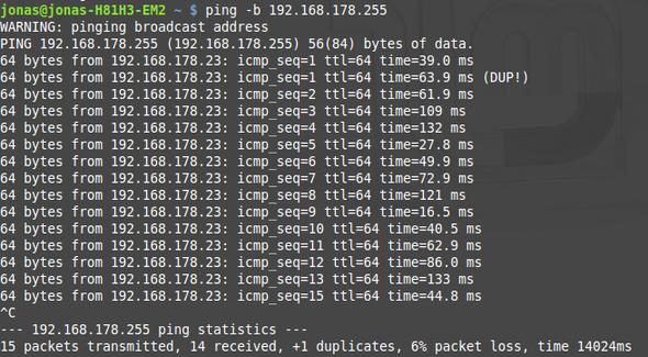 Ping 2 - (Computer, Informatik, Netzwerk)