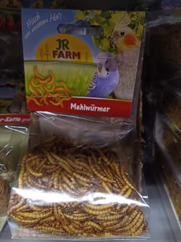 Mehlwürmer Essen