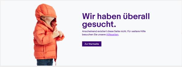 Ebay Artikel wird nicht angezeigt. Wie komme ich zum Artikel?