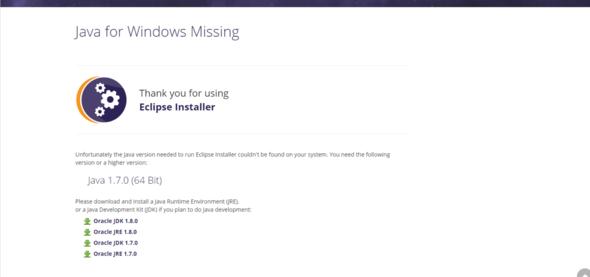 Seite im Browser - (Windows, Fehler, Java)