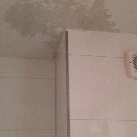ein gr er werdender wasser fleck im bad an der decke wasserschaden. Black Bedroom Furniture Sets. Home Design Ideas
