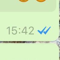 Häkchen blaue bei 2 whatsapp was bedeuten So deaktivieren