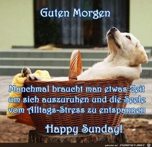 Ein Wunderschönen Guten Morgen Heute Zum Sonntag In Welchem