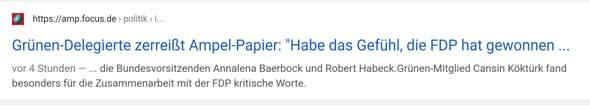 Eine Grünen Deligierte sagte dass die FDP gewonnen hat, stimmt ihr dem zu?
