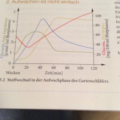 Dies ist die Grafik, um die es sich dabei handelt. - (Schule, Biologie, ökologie)