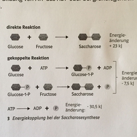 Großartig Klassifizierung Von Chemischen Reaktionen Arbeitsblatt ...