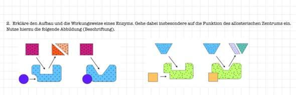 Enzyme: Bau und Funktion?