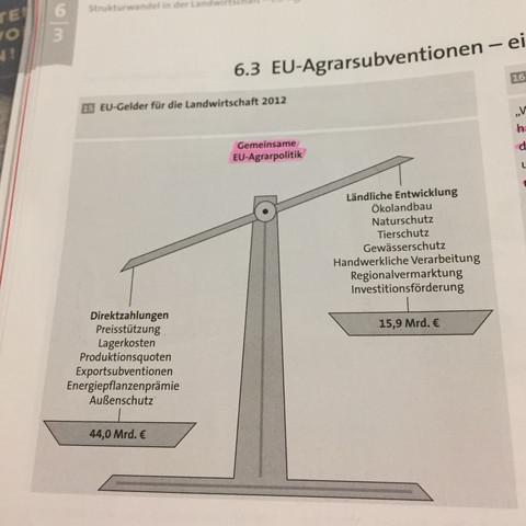 Bitte dringend um Hilfe🙏🏻🙏🏻 - (Wirtschaft, Erdkunde, Europa)