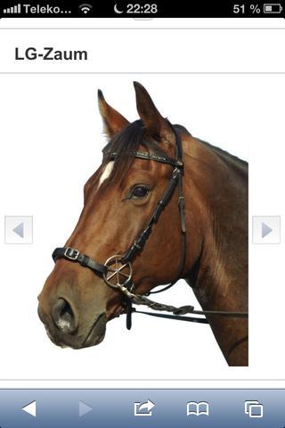 Gebisslose Zäumung - (Pferde, Reiten, räumung)