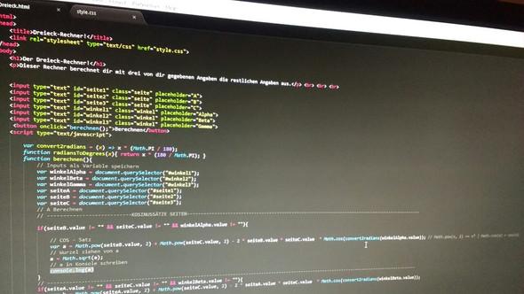 Hier der Code. Nur der sichtbare Teil ist wichtig. - (Mathe, programmieren, Informatik)