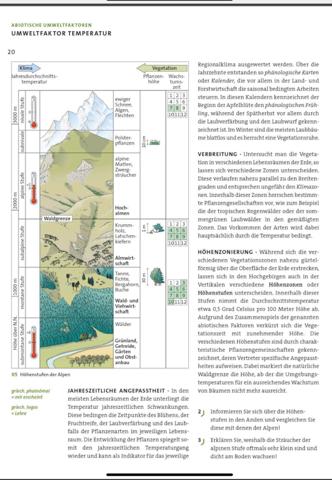 Erklären Sie, weshalb die Sträucher der alpinen Stoffe oftmals sehr klein sind und dicht am Boden wachsen?