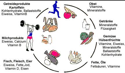 - (Ernährung, Sport und Fitness)