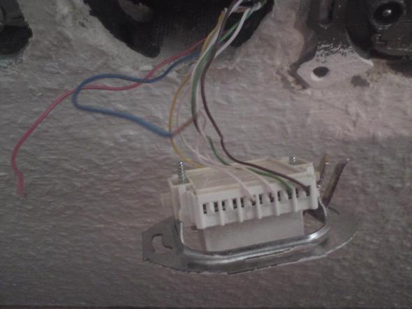 es geht um den aufbau einer steckdose f r lan kabel brauche hilfe internet. Black Bedroom Furniture Sets. Home Design Ideas