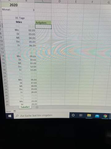 Excel dynamischer Monatskalender: wie gebe ich manuell Daten für jeden Monat ein ?