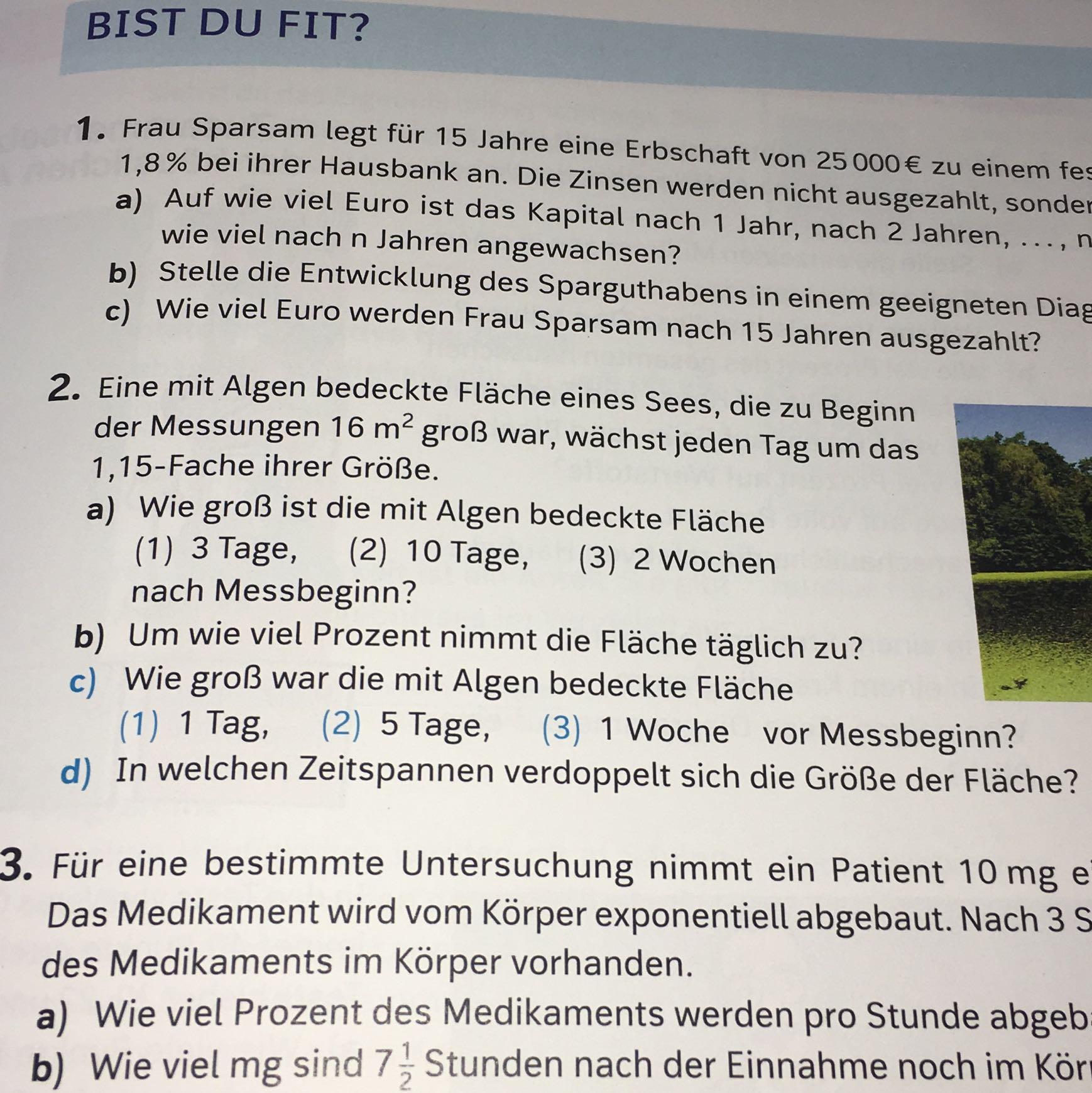 Wunderbar Prozent Ausbeute Chemie Arbeitsblatt Zeitgenössisch ...
