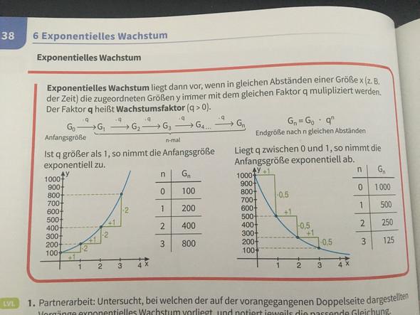 Exponentielles Wachstum - (Schule, Mathematik)