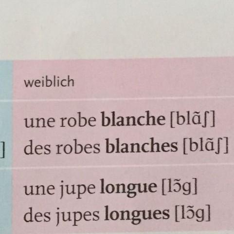 Unregelmäßige Adjektive (weiblich) - (Schule, Lehrer, franzoesisch)
