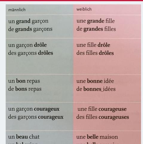 Das Adjektiv - (Schule, Lehrer, franzoesisch)