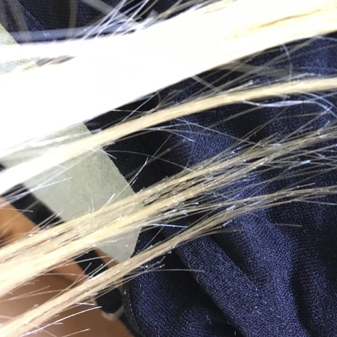 Extremer Spliss - (Mädchen, Haare, Beauty)