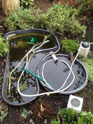 Fadenalgen im Teich durch Kälte oder mit Hausmitteln bekämpfen? KEINE CHEMIE!