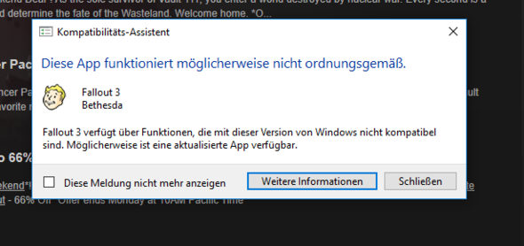 Das Fenster was sich öffnet wenn ich das Spiel starte. - (PC-Spiele, PC-Games, Fallout)