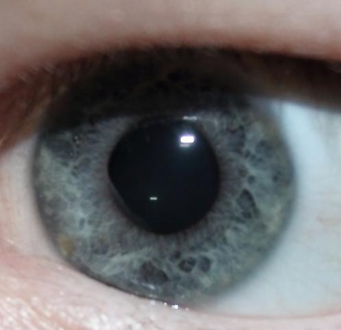 Das Auge - (Augenfarbe, farbenlehre)