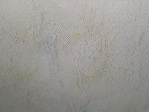 Wand Feuchtigkeit Tapezieren