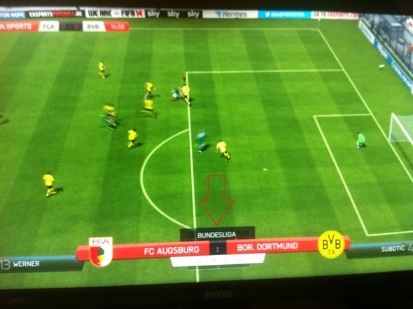 Fifa 14 Karrieremodus Problem - (Computer, PC, Games)