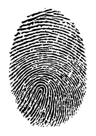 Fingerabdruck auf dem Display anzeigen lassen?