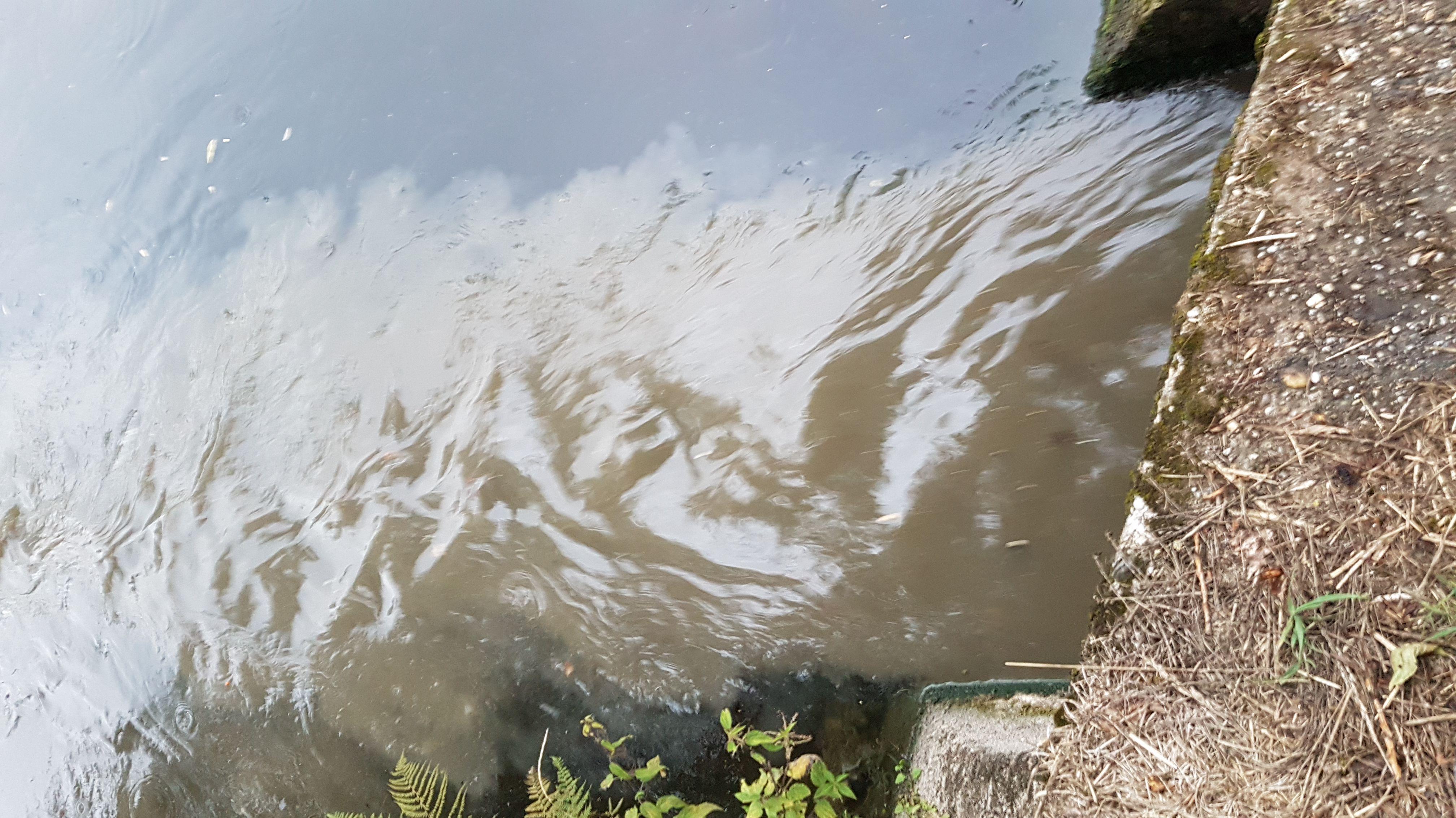 Ausfluss Wie Wasser
