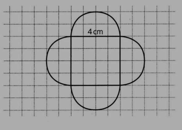 Flächeninhalt und Umfang berechnen?