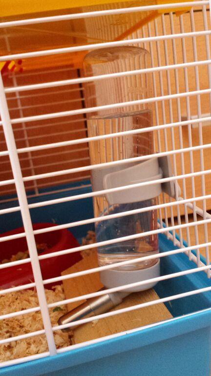 flasche im hamsterk fig rutscht dauernd runter wie kann ich das verhindern hamster k fig. Black Bedroom Furniture Sets. Home Design Ideas