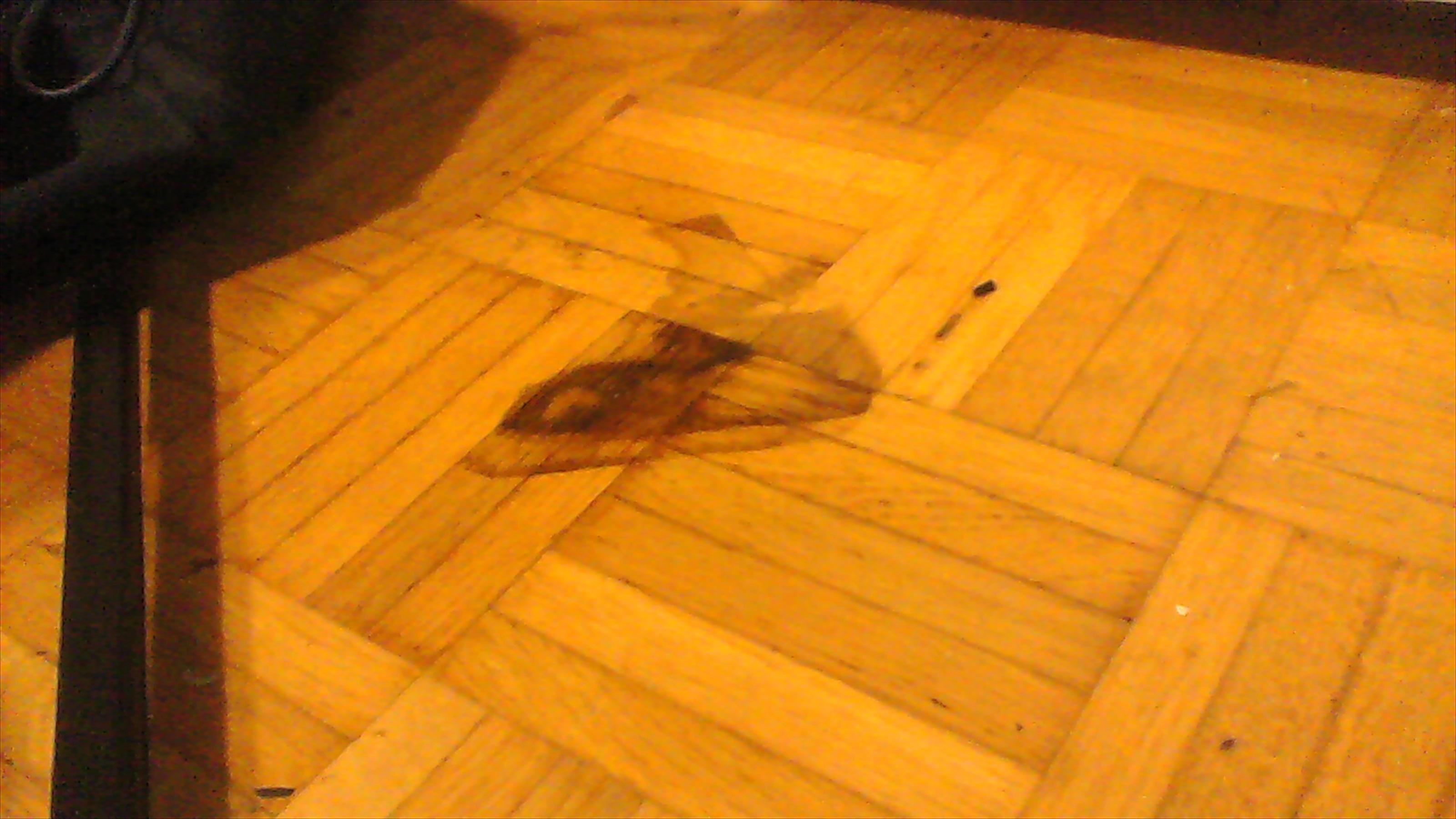 fleck von zerdr ckter und verschimmelter kartoffel auf boden was tun haushalt waschen flecken. Black Bedroom Furniture Sets. Home Design Ideas