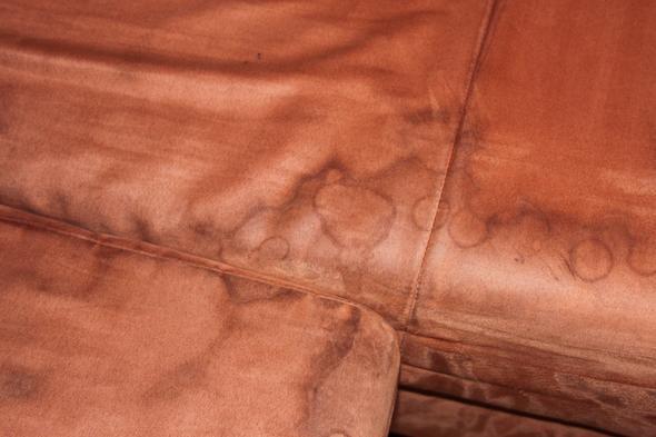 Flecken Nach Polsterreiniger Was Tun Haushalt Reinigung Couch