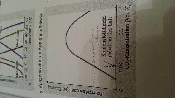 co2 gehalt - (Biologie, fotosynthese)