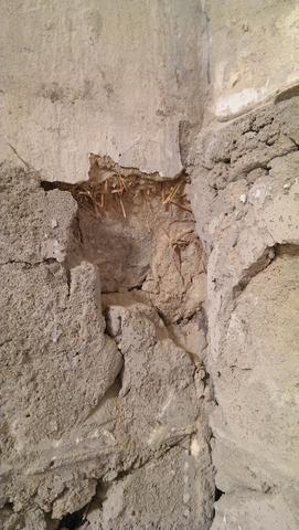 Wand2 - (renovieren, verputzen, Sanieren)