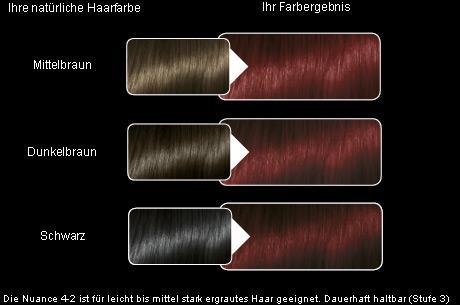 Mahagoni haarfarbe olia