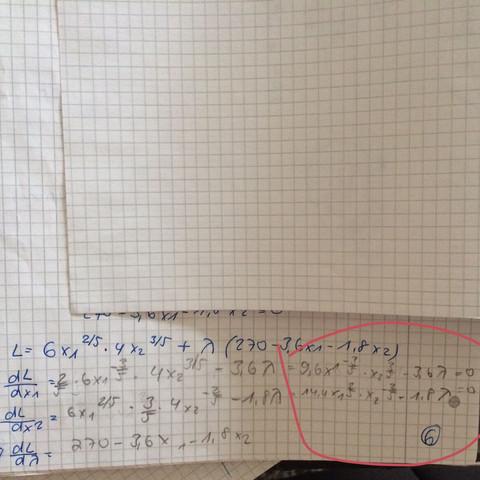 Lagrange Rechenweg  - (Mathe, Rechnungswesen, VWL)