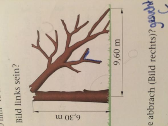 frage zur aufgabe zum satz des pythagoras mathematik. Black Bedroom Furniture Sets. Home Design Ideas