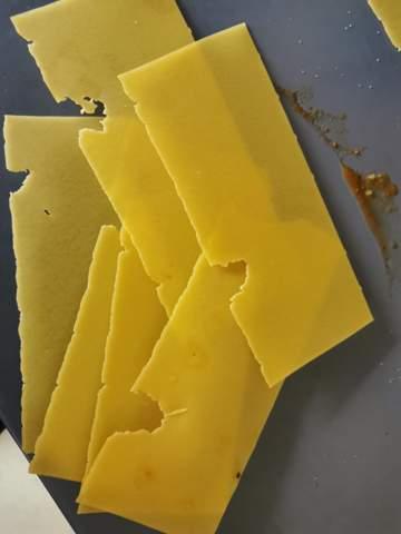 Frische Lasagne Blätter sehen angefressen aus?