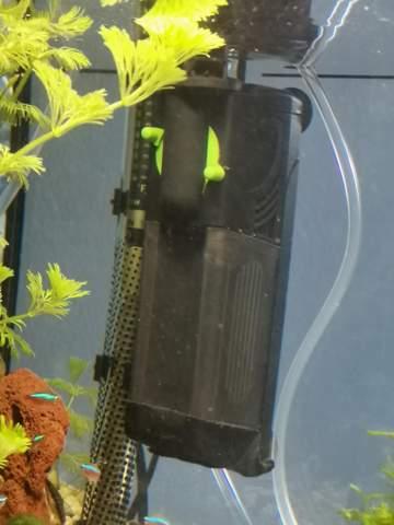 Für was ist eine Aquarium Membranpumpe hilfreich?