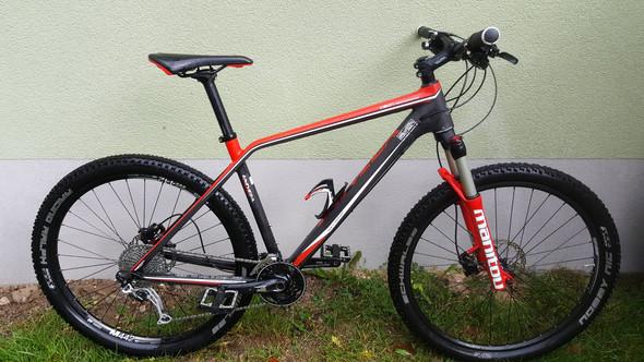 Für wieviel soll ich dieses Mountainbike verkaufen?