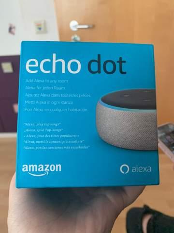 Funktioniert der Echo Dot alleine?