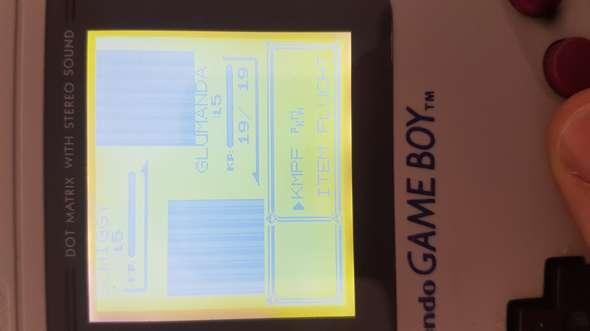 GB Pokemon Rot Grafik bug?