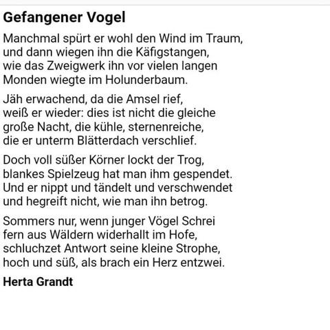 Gedichtinterpretationgefangener Vogel Schule Deutsch Gedicht