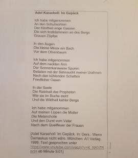 Gedichtsanalyse: Adel Karasholi: Im Gepäck?